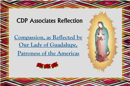 Reflection On Compassion – Associates Of The Congregation Of Divine Providence (ACDP)